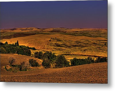 Harvested Fields Metal Print by David Patterson