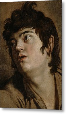 Head Of A Young Man Metal Print by Peter Paul Rubens