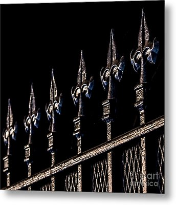 Heady Toppers Metal Print by James Aiken