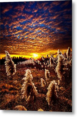 Heaven And Earth Metal Print by Phil Koch