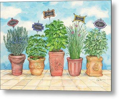 Herb Garden Metal Print by Paul Brent