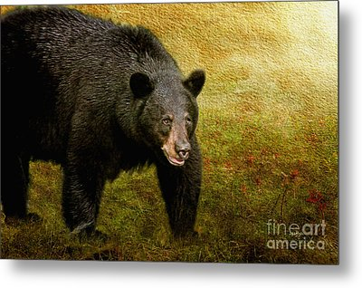 Here Comes Trouble Metal Print by Lois Bryan
