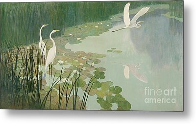 Herons In Summer Metal Print by Newell Convers Wyeth