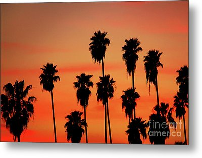 Hollywood Sunset Metal Print by Mariola Bitner
