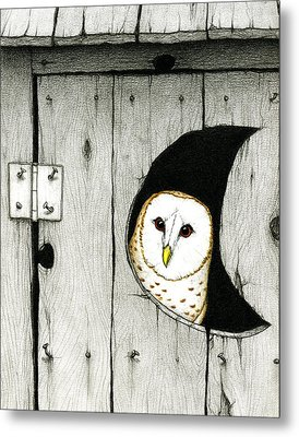 Hoo Tooted Metal Print by Don McMahon