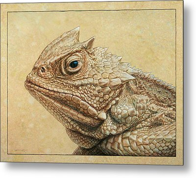 Horned Toad Metal Print by James W Johnson