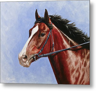 Horse Painting - Determination Metal Print by Crista Forest