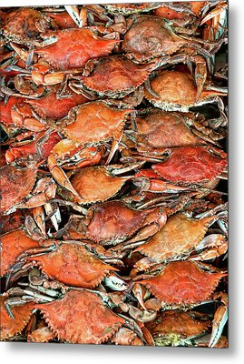 Hot Crabs Metal Print by Sky Noir Photography by Bill Dickinson