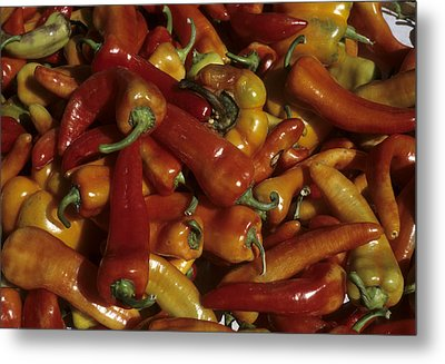 Hot Red Peppers Sit In A Bin Metal Print by Taylor S. Kennedy
