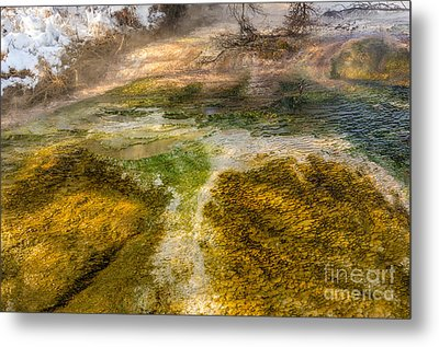 Hot Springs Pool Metal Print by Sue Smith