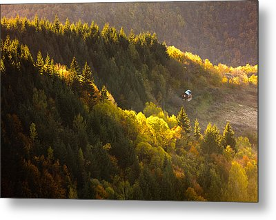 House By The Golden Wood Metal Print by Evgeni Dinev