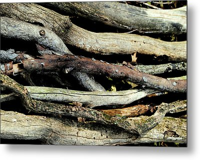 How Much Wood Would A Woodchuck Chuck Natural Wood Pile Ledge Park Wisconsin Metal Print by Laura Pineda