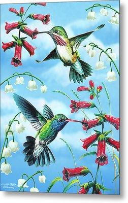Humming Birds Metal Print by JQ Licensing