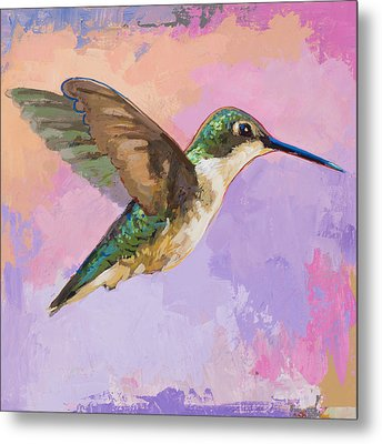 Hummingbird #2 Metal Print by David Palmer