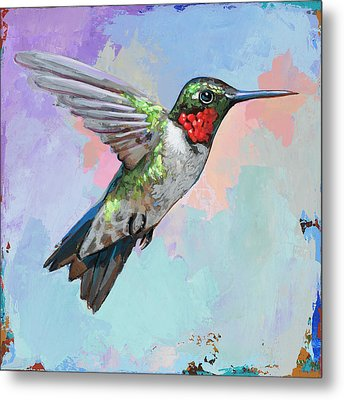 Hummingbird #4 Metal Print by David Palmer