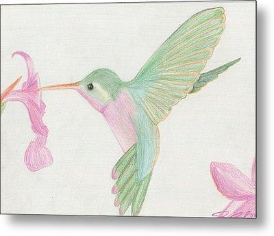 Hummingbird Metal Print by Joanna Aud
