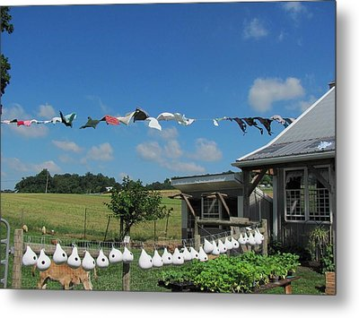 Hung Out To Dry Metal Print by Renee Holder
