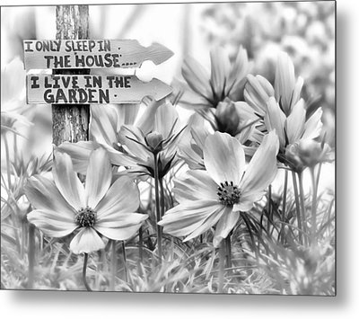 I Live In The Garden-2 Metal Print by Nina Bradica