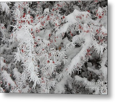 I Love Winter Metal Print by Carol Groenen