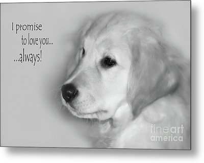 I Promise To Love You Always Metal Print by Cathy  Beharriell