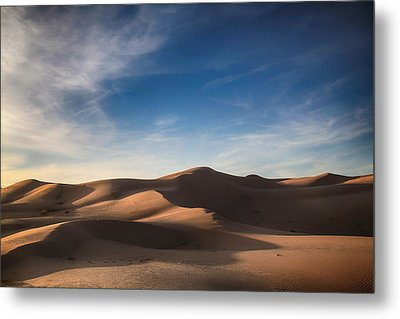 I'd Walk A Thousand Miles Metal Print by Laurie Search