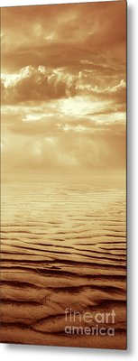 Illusion Never Changed Into Something Real Metal Print by Dana DiPasquale