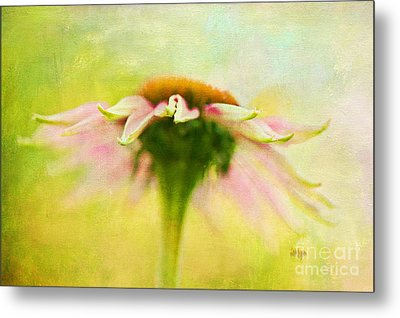 In Perfect Harmony Metal Print by Lois Bryan