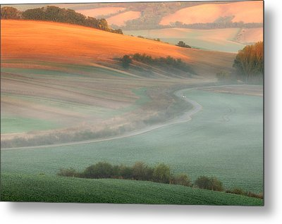 In The Morning Mist Metal Print by Piotr Krol (bax)