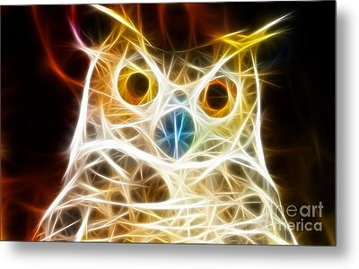 Incredible Owl Portrait Metal Print by Pamela Johnson