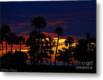 Indigo Sunset Metal Print by Barbara Bowen