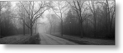 Into The Fog Metal Print by David April