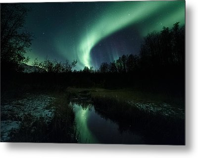 Into The Woods Metal Print by Tor-Ivar Naess