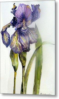 Iris In Bloom Metal Print by Mindy Newman
