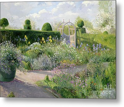 Irises In The Herb Garden Metal Print by Timothy Easton