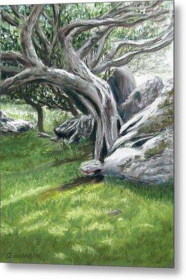 Irish Tree Ring Of Kerry Metal Print by Joan Swanson
