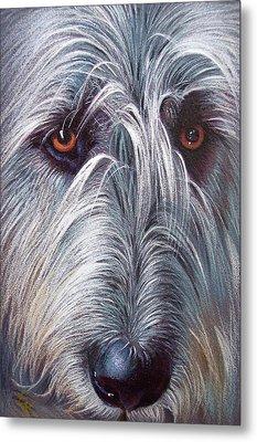 Irish Wolfhound Metal Print by Elena Kolotusha