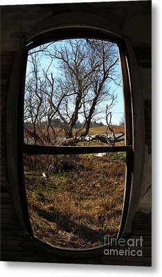 It's All A Matter Of Perspective Metal Print by Amanda Barcon