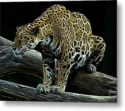 Jaguar Watching Metal Print by Sandy Keeton