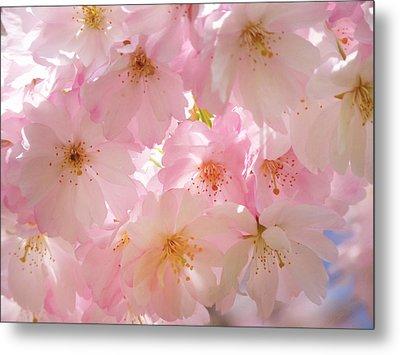 Japanese Cherry Blossom Beauty Metal Print by Georgiana Romanovna