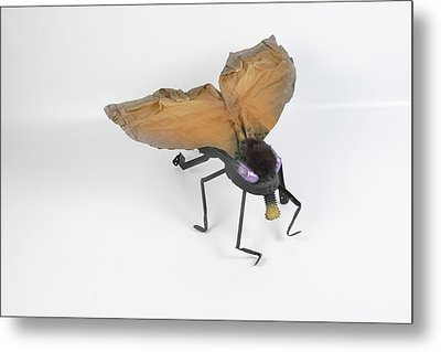 Jeanetic Violet-eyed Fly Metal Print by Michael Jude Russo