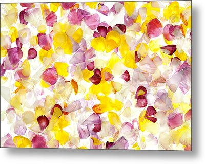 Jewel Like Petals Metal Print by Brad Rickerby