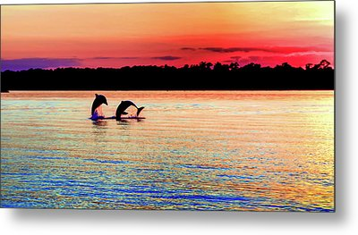 Joy Of The Dance Metal Print by Karen Wiles