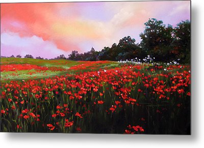 June Poppies Metal Print by Dianna Ponting