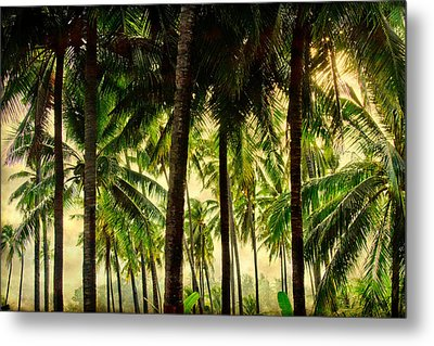 Jungle Paradise Metal Print by James BO  Insogna