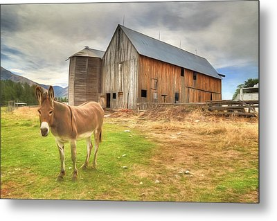 Just Another Day On The Farm Metal Print by Donna Kennedy