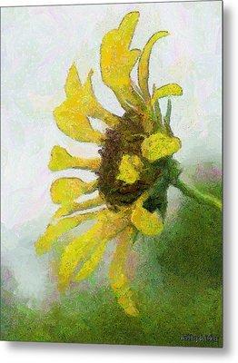 Kate's Sunflower Metal Print by Jeff Kolker