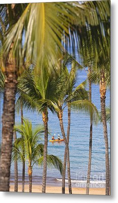 Kayakers Through Palms Metal Print by Ron Dahlquist - Printscapes