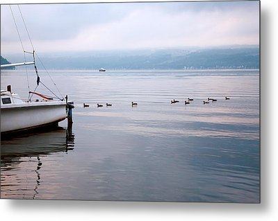 Keep Your Ducks In A Row Metal Print by Steven Ainsworth