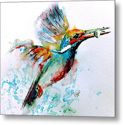 Kingfisher Metal Print by Steven Ponsford