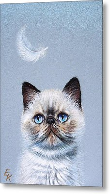 Kitten And Feather  Metal Print by Elena Kolotusha